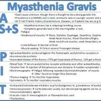 กล้ามเนื้ออ่อนแรงในผู้สูงอายุ-myasthenia-gravismg